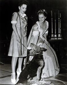 Oliva and Joan with a dog