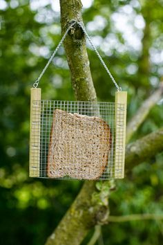 Bird Bread Feeder How simple would this be to make! Fold the wire in half and attach to the boards. Bird House Feeder, Diy Bird Feeder, Bird House Kits, Bird Houses Diy, Bird Aviary, Kinds Of Birds, Backyard Birds, Garden Birds, Bird Feathers