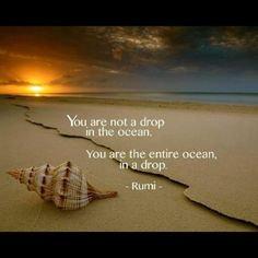 Rumi quotes are quite often quoted by people from every race. The spiritual nature of the Rumi quotes and sayings makes one realize the truth of this world. Rumi Poem, Rumi Quotes, Spiritual Quotes, Wisdom Quotes, Inspirational Quotes, Qoutes, Quotations, Deep Quotes, Motivational Quotes