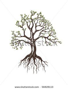 """""""Trees are sanctuaries"""""""