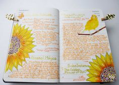 Sunflower / Girasol | Pages from my Bird Diary : ) | Milagritos Flores Bell | Flickr
