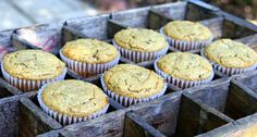Best Ever Almond Flour Pumpkin Muffins (Grain Free) - These sound easy to make, healthy and delicious.