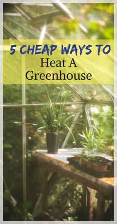 Way To Heat A Greenhouse 5 Cheap ways to heat a greenhouse. Save money on heating your greenhouse in the winter by using various methods for keeping your costs Cheap ways to heat a greenhouse. Save money on heating your greenhouse in the winter by u Heating A Greenhouse, Diy Greenhouse Plans, Outdoor Greenhouse, Backyard Greenhouse, Greenhouse Growing, Cheap Greenhouse, Greenhouse Wedding, Homemade Greenhouse, Diy Small Greenhouse