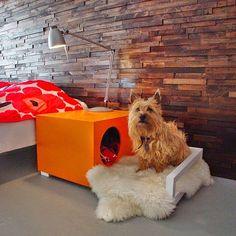 Para os que amam os animais!!  Criado mudo com caminha para o Pet! #ahlaemcasa #criadomudo #mesinha #pet #dog