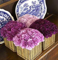 Bouquet d'oeillets violets