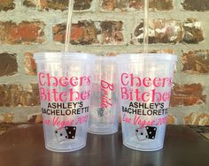 Cheers Bitches Vegas Theme Party Tumbler 16 ounce  - PRIORITY SHIPPING