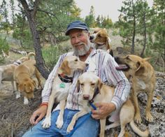 Former Research Dogs Find Loving, Safe Haven || Dogs find a second chance at Kindness Ranch. ... What a great rescue! I am so glad research facilities are utilizing this organization's services. While I don't like it, I can understand the need for research study dogs (they're sort of like humans who go through clinical drug trials) but thankfully Kindness Ranch is there to help these dogs when their research jobs are over.