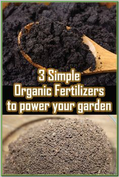 3 Simple Organic Fertilizers That Can Power Your Garden! is part of Organic vegetable garden - Take a look at these three simple, yet amazing organic fertilizers that can power your garden this year to new heights, and better yields! Organic Insecticide, Organic Fertilizer, Garden Compost, Garden Soil, Vegetable Gardening, Garden Beds, Leaf Compost, Compost Tea, Garden Cafe