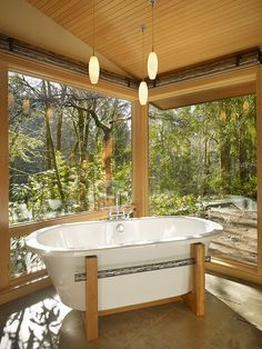 A wooded glass pavilion in the forestdesigned by Finne Architects.