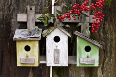 How to build a bird nestbox  http://redshed.co.uk/blog/how-to-build-nest-box/