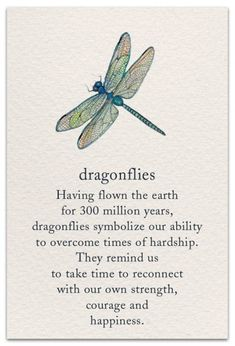 Dragonfly Support & Encouragement Card - Gardening For Life Dragonfly Quotes, Dragonfly Art, Dragonfly Symbolism, Dragonfly Meaning Spiritual, Dragonfly Tattoo Design, Spiritual Meaning, Dragonfly Images, Butterfly Sayings, Dragonfly Painting