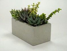 From Auré Aura: OPUSCONCRETE Details:  Opusconcrete will make you want to start a succulent garden ASAP. Mike has been creating his concrete planters for a few years now and lik...