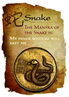 The intelligent Snake calculates outcomes ahead of time.  The Snake  Snakes are born organizers and know well how to use their talents of discretion, discernment and intuition. Kind and considerate, they remain quiet in company. But under this silent demeanor can be a stubborn and suspicious person that doesn't like pain or failure. The Snake has the ability to see beyond appearances to something deeper.....