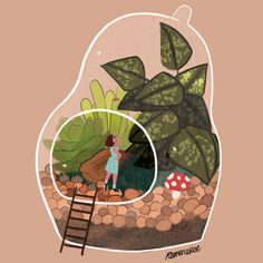 This is a Blog. Welcome. - reimenaashelyee:   Terrarium
