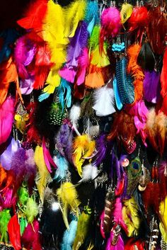 colorful feathers- Would love to see these hanging from a Stephanie Dawn bag in color, Bloom Dance.