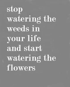 Stop watering the weeds in your life and start watering the flowers.