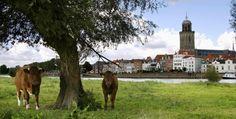 #Deventer Het landschap in de omgeving is in zijn ontstaan ook in belangrijke mate bepaald door de rivier de IJssel. Deventer, Diepenveen, Schalkhaar, Lettele, Okkenbroek en Bathmen hebben u veel te bieden en heten u dan ook welkom in deze Gastvrije Hanzestad aan de IJssel.