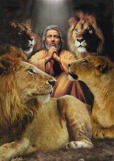 Nothing is impossible with God! Daniel was so close to God. Blessed is he who calls on the name of the Lord Jesus Christ for help! Daniel And The Lions, La Sainte Bible, Bd Art, Religion, Bible Pictures, Prophetic Art, Biblical Art, Lion Of Judah, Old Testament
