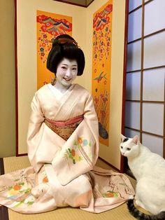 Desember 2015 in Miyagawacho: Fumika san debuted as minarai geiko! She lives in okiya yoshifumi and decided to become a geiko after university graduation. She seems to be so happy to try on the hikizuri kimono for the first time!  Read more: https://twitter.com/geishakai/status/672363206669672448