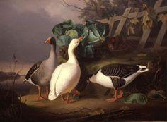 """""""Cabbage eating geese"""", 1854 - oil on canvas - Ferdinand von Wright - Suomen valtion omistama teos """"Kaalia syövät hanhet"""" kuuluu Ferdinandin suurikokoisiin kerronnallisiin maalauksiin, joita alkoi syntyä Ruotsissa 1850-luvun alussa."""