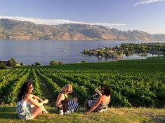 Walk the wine trails of the Okanagan Valley and go hiking, biking, and boating in British Columbia's Thompson Okanagan region, one of Canada's 50 Places of a Lifetime.