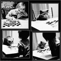 """Andy Prokh -  """"Uma Garota e o seu Gato"""""""