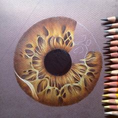Pencil Drawing Tips eat dirt Cool Art Drawings, Pencil Art Drawings, Realistic Drawings, Colorful Drawings, Art Drawings Sketches, Horse Drawings, Drawing Art, Illustration Au Crayon, Pencil Drawing Tutorials
