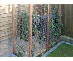 Netjes de containers uit het zicht. Garden Deco, Love Garden, Dream Garden, Small Pergola, Diy Pergola, Modern Pergola, Patio Deck Designs, Side Yards, Backyard Makeover