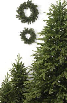 Abeti e corone di pino artificiali...
