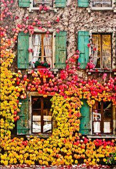 Colourful apartment nathanlawrenson.s...