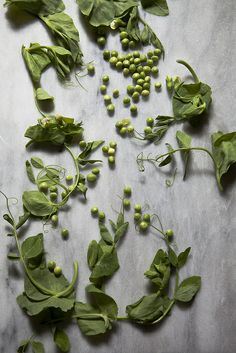 IMG_5050 by Nicole Franzen Photography, via Flickr - Buttery Peas with Garlic Scapes