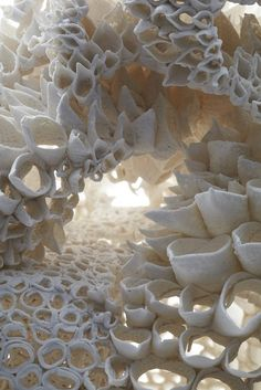 annajungdesign: Coral, Fragment shell