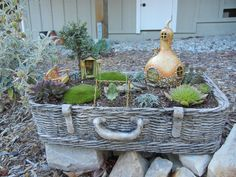 The Second Half - Fairy Garden
