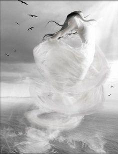 .white tornado