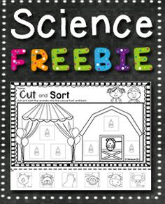 FREE RESOURCE:  Circus themed resource which involves students practising their fine motor skills (cutting and pasting) as well as identifying and sorting animals.  Suitable for preschool.