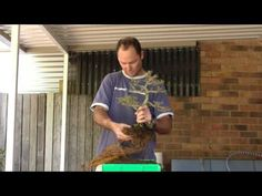 Root Pruning and Re Potting
