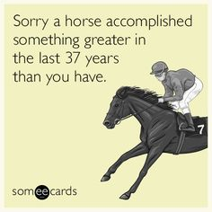 Sorry a horse accomplished something greater in the last 37 years than you have.