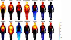 Scientists have long known that common emotions can trigger sensations in our bodies -- whether it's butterflies in the stomach (anxiety) or hot cheeks (shame). And now a new study suggests that we...