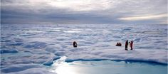 Scientist are investigating #Arctic #sea #ice to improve future #climate #model. Know how this study helps to learn more about climate change.