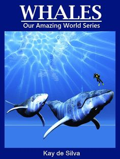 Whales Amazing Pictures Fun Facts on Animals in Nature Our Amazing World Series ($2.99)