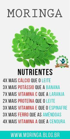 Os 40 Benefícios da Moringa Para Saúde  #moringa #acáciabranca #moringabeneficios #moringaarvore #moringaemagrece #moringacapsulas #moringacontraindicações #moringaoleifera #moringacha #pédemoringa #pódemoringa #chádemoringa #benefíciosdamoringa #propriedadesdamoringa #paraqueserveamoringa #oqueéamoringa #sucodemoringa #moringareceita Miracle Tree, Tropical Backyard, Hemp Seeds, Medicinal Plants, Natural Medicine, Superfoods, Healthy Tips, Natural Health, Moringa Oleifera