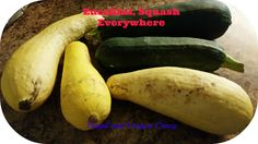 A collection of recipes with zucchini and squash to try out for the family.