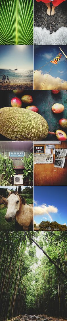 à la mode Journals -  is the creative outlet of Rick Poon, a Los Angeles photographer obsessed with food, travel, and design