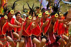 Flower Festival, Baguio City, Philippines via binscorner.com