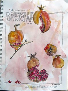 Pomegrantes ~ from my sketchbook by janelafazio, via Flickr