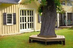 Tree Bench ~ there is a tree at the side of the house where the grass doesn't grow. I need this there.