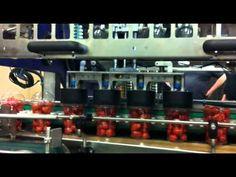 Tomatoes shaker filler line