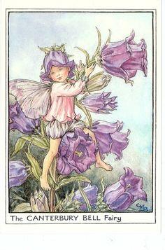 Flower Fairies Cicely Mary Barker The Canterbury Bell Fairy