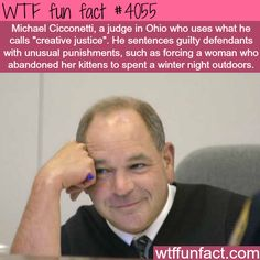 "Michael Cicconetti - lthe judge who uses ""creative justice"" - Faith In Humanity Restored!  ~WTF weird & interesting fun facts"