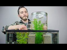 Make A Vacuum Suspended Fish Tank This is an interesting way to turn a classic science experiment into a functioning addition to a fish tank. It makes a pretty cool display! Be sure if you try this to have plenty of water circulation in your tank or the water in the suspended area could become oxygen deprived. There really shouldn't be any problems if the tank is well functioning prior to adding the new compartment. You may also want to put a w